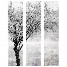Dekorativer Wandrahmen Baum  Schwarz-Weiß