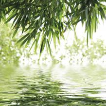Wanddekoration Element 3D Bambus & Wasser