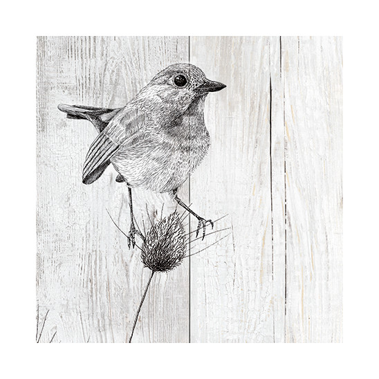 Dekorative Wand 3D Element Siberie Vogel